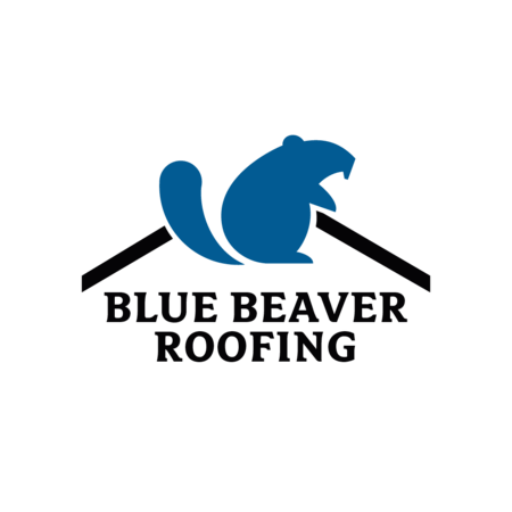 Blue Beaver Reviews Page